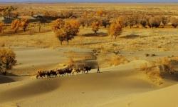 Khám phá sa mạc lạnh Taklamakan ở Trung Quốc