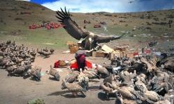7 tập tục mai táng ở vùng đất Tây Tạng, Trung Quốc